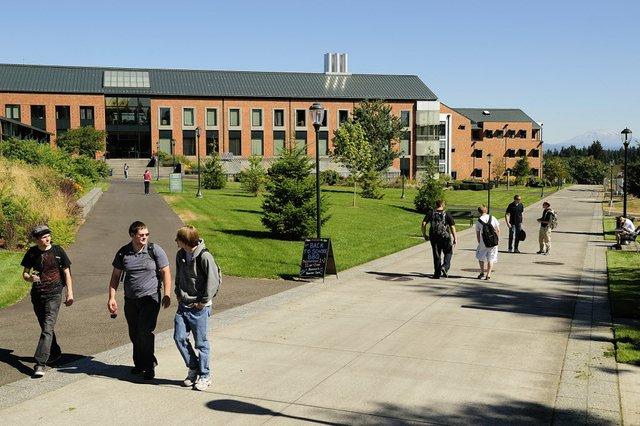 Campus WSU 50 Sombras de Grey