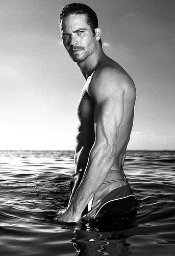 paul-walker-Christian Grey